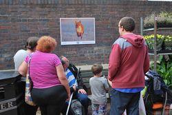 Day 242 - 30 August - Malvern Open Air Photographic Exhibition