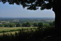 Day 192 - 11 July - Malvern Summer view