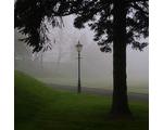 29 April - Morning Fog