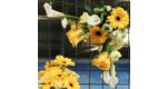 Malvern Floral Art Club
