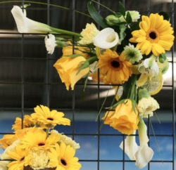 Malvern Floral Art Club -