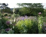 Open Garden Colwall