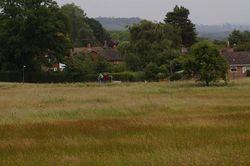 Day 183 - 2 July - Poolbrook Common Malvern