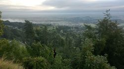 Clearing Space for Creativity - Malvern Hills