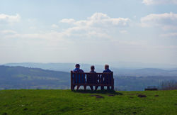 A Seat with a View - All About Article