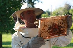 All About Beekeepers - Beekeepers