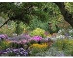 The Picton Garden Colwall